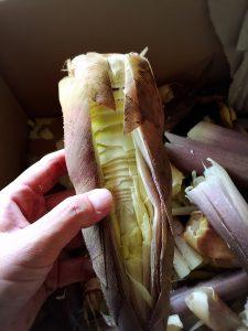 淡竹 剥き方